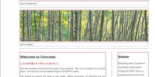 Concrete5_CMS